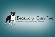 Because of Crazy Time